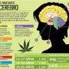 Marihuana – Efectos
