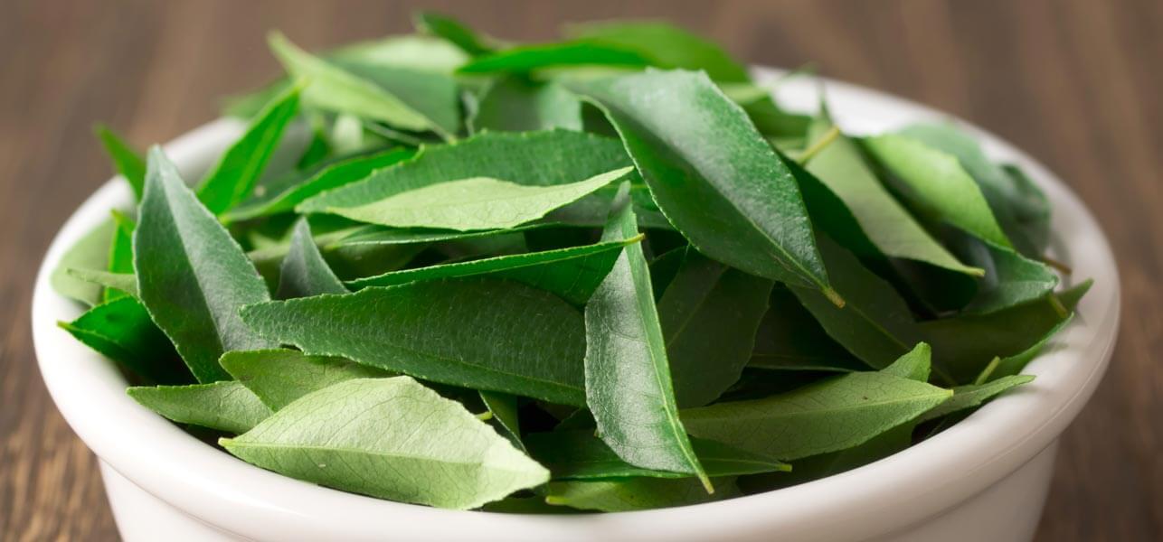 Remedios caseros para adelgazar la barriga hojas para adelgazar