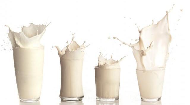 El Yogurt Es Proteína, Que Porcentaje De Proteínas Tiene