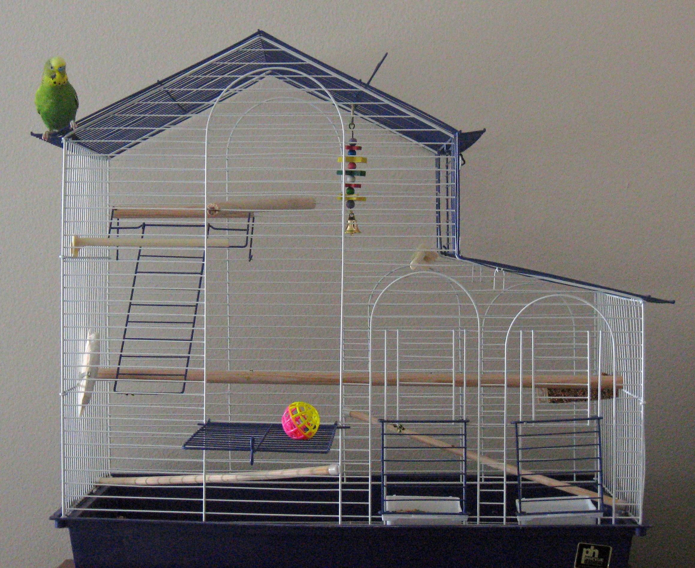 Jaulas para periquitos tipos de jaulas que jaula usar for Jaulas para cria de peces
