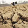 Efectos de la contaminación del suelo – DAÑOS IRREPARABLES