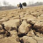 PELIGROS Y CONSECUENCIAS - Efectos de la contaminación del suelo